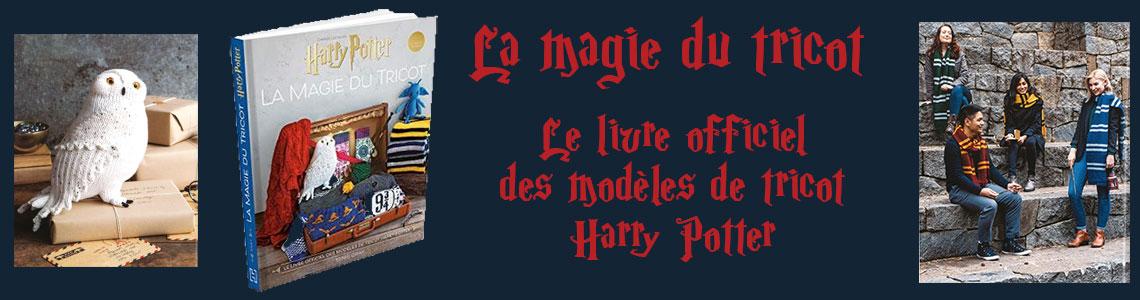 banniere-harry-potter