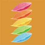 Jeu de 5 navettes de frivolité - Coloris vifs - Clover
