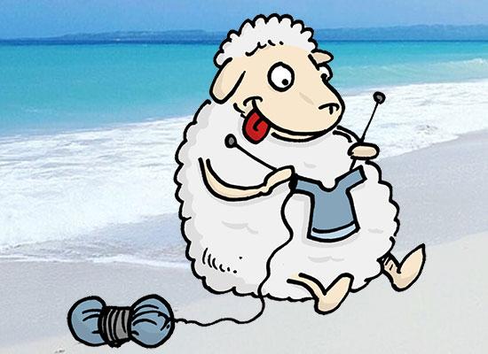 Photo cocasse - Page 2 Mouton-plage